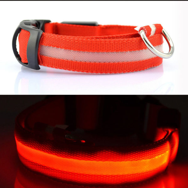 LED Dog Safety Collar RED