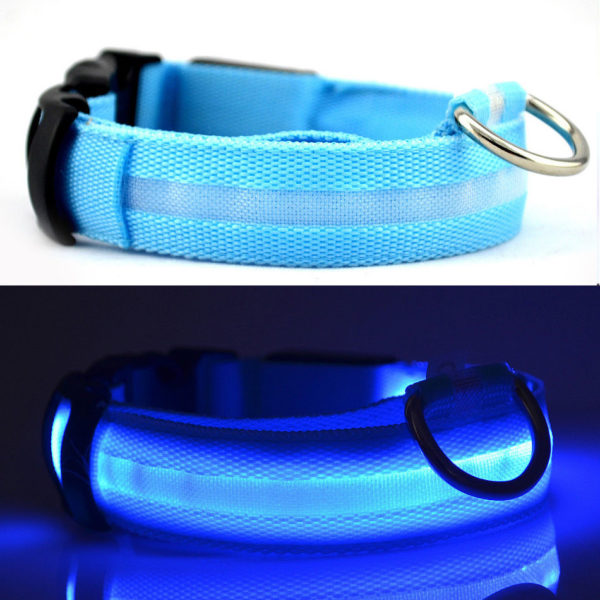 Pet Safety Collar BLUE