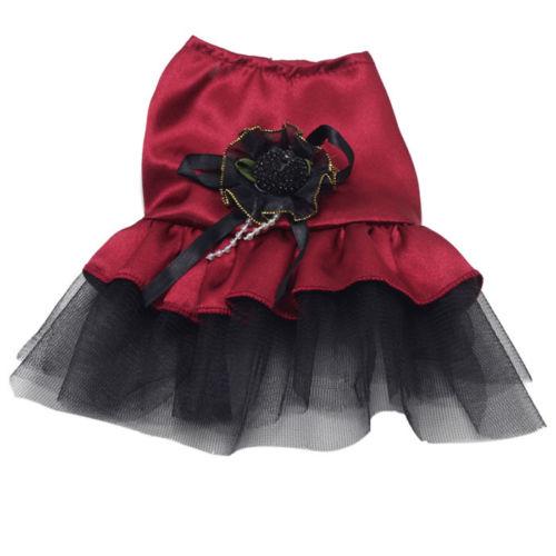 Lace Dress Tutu