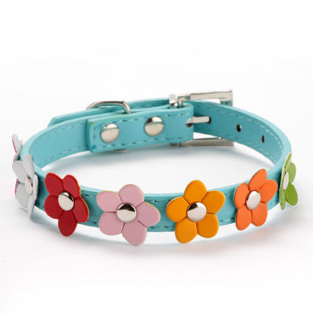 Flower Studded Collar