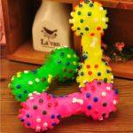 Squeaky Bone Chew Toy