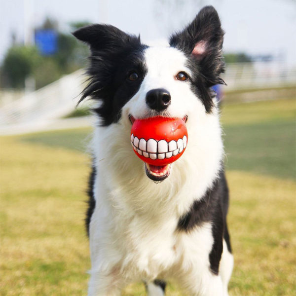 Toothy Squeaky Ball
